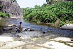 養老川でアユ釣り
