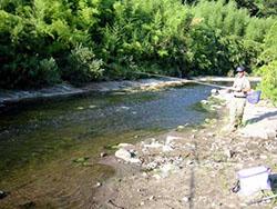 千葉県 湊川