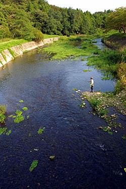 大北川でアユのエサ釣り