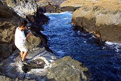 白浜の磯でメジナ釣り