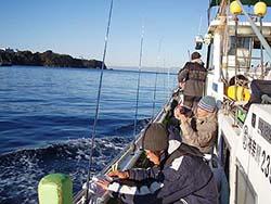 城ヶ島沖カワハギ船