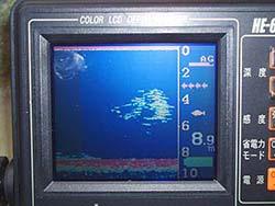 三島湖魚探にワカサギの反応