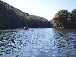三島湖ワカサギ釣り