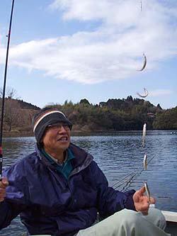 三島湖ワカサギ釣果