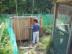 鶏小屋作成
