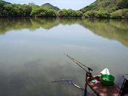 ヘラブナ釣り山上湖