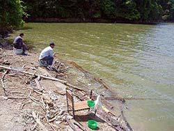 ヘラブナ釣り
