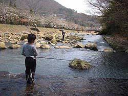 早川でニジマス釣り