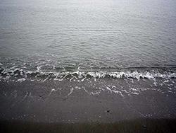 シロギス釣り場