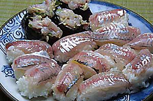 アジの握り寿司